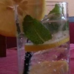 Gamot Elderflower Tonic
